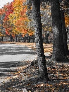 Fall in Ligonier Pennsylvania