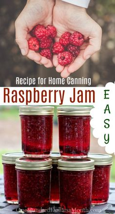 Canning 101 – How to Make Raspberry Jam – One Hundred Dollars a Month – Food: Veggie tables Raspberry Jelly Recipe, Homemade Raspberry Jam, Homemade Jelly, Raspberry Recipes, Red Raspberry, Strawberry Jam, Home Canning Recipes, Freezer Jam Recipes, Canning 101