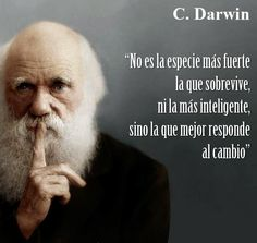 It's not the strongest specie that survives, nor the smartest, but the one that better responds to change. Spanish Inspirational Quotes, Spanish Quotes, Wisdom Quotes, Me Quotes, Motivational Quotes, Positive Phrases, Quotes En Espanol, Thinking Quotes, Love Phrases