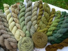 Wolle Natur Farben: Pflanzenfarben sind eine Macht, die.... Fabric Yarn, How To Dye Fabric, Wool Yarn, Crochet Yarn, Knitting Yarn, Spinning Wool, Plant Painting, Yarn Stash, Textiles