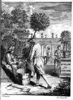 Citricultura oft regeringhe der uythemische Boomen te weten Oranien, Citroenen, Limoenen, Granaten, Laurieren en andere (1682)