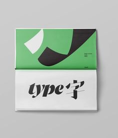 "100 lettering ""type字"" — TienMin Liao"