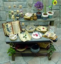 EV's miniature belladonna table study