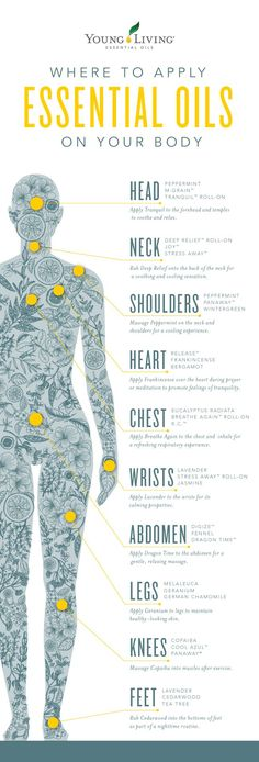 Curious where to apply essential oils on the body? Check out this post to learn more about how to apply essential oils about how sensory receptors affect what we feel. Yl Essential Oils, Essential Oil Diffuser, Essential Oil Blends, Young Living Essential Oils Recipes Cold, Essential Rewards Young Living, Diluting Essential Oils, Living Essentials, Young Living Oils, Aromatherapy Oils