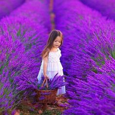 Love the color purple
