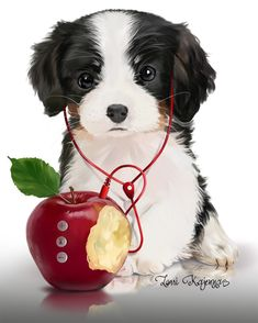 Musical puppy/ Paint Shop Pro compatible PSD character separate from background 1440x1800@300ppi http://picsfordesign.com/en/catalogue/id_116730_musical_puppy.pix