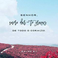 Eu te louvarei, Senhor , de todo o meu coração; contarei todas as tuas maravilhas. Sl 9:1