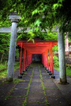 Torri Gates at a Hida-Takayama Shinto Shrine. Gifu, Japan.