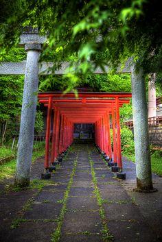 Torri Gates at a Hida-Takayama Shinto Shrine. Gifu, Japan.