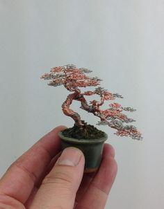 Des bonsaï miniatures en fil de fer  Photo