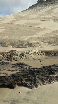 Érosion des dunes , plage Petit Nice , Bassin Arcachon.