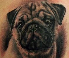 Dogs tattoo ideas on Pinterest | Chihuahua Tattoo, Pug Tattoo and Dog