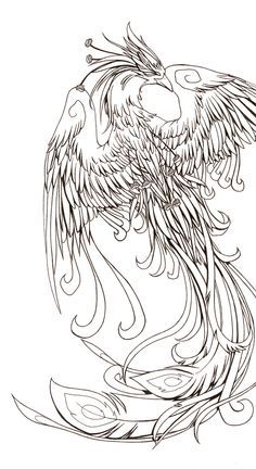 japanese phoenix outline - Google Search …