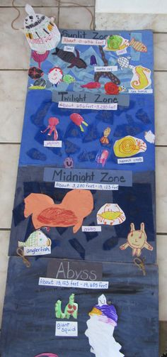 Last month, our research led us deep as we dove into the zones of the ocean! We had a blast with ocean exploration. Ocean Projects, Science Projects, School Projects, Ocean Activities, Preschool Activities, Layers Of The Ocean, Ocean Lesson Plans, Ocean Diorama, Ocean Zones
