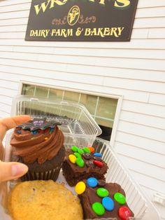#wrightfarm #weekendtrip #bostonuniversity #rhodeisland #newengland #indiansummer #chocolateville #cupcake #halloween M&Ms #cookies