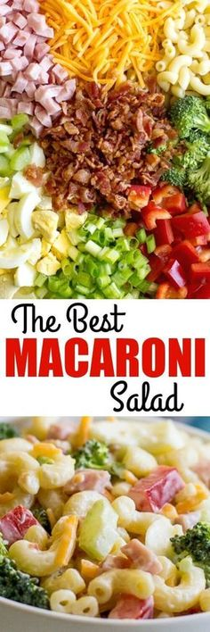 This is my Grandma's recipe and the BEST Macaroni Salad ever. It has everything you want: Ham bacon cheese eggs veggies and a creamy dressing! Salad Bar, Soup And Salad, Pasta Dishes, Food Dishes, Ham Side Dishes, Barbeque Side Dishes, Broccoli Dishes, Lactuca Sativa, Best Macaroni Salad