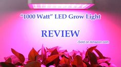 """1000 Watt"" LED Grow Light by ColoFocus - Review"