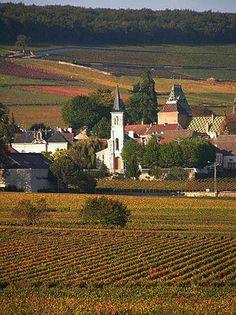 Aloxe Corton le village