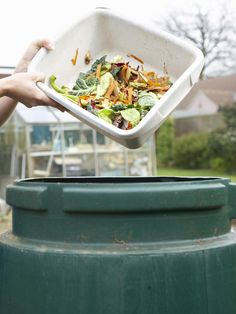 Composting the Easy Way : Outdoors : Home & Garden Television