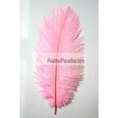 Baby Pink Ostrich Feathers 100 Pieces inch Wholesale Dozens Bulks Wedding Crafts Arts DIY Events and Stage Performance Decorations Indian Feathers, Large Feathers, Ostrich Feathers, Ostrich Feather Centerpieces, Eiffel Tower Vases, Pink Themes, Wedding Centerpieces, Wedding Decorations, Wedding Crafts