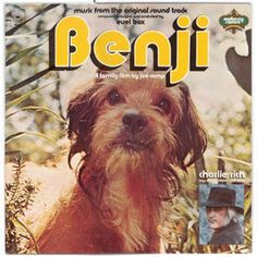 Benji- 1974 - My wife was forbidden by her grandmother from watching Benji movies because they would make her cry ...