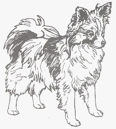 """Dog Rubber Stamp - Papillon-2E (Size: 1-3/4"""" Wide X 2"""" Tall) -- Want to know more, click on the image."""