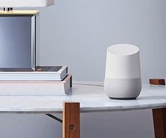A pair of Google Homes bicker like an old couple on Twitch
