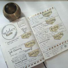 weekly spread   lauren's notebook blog