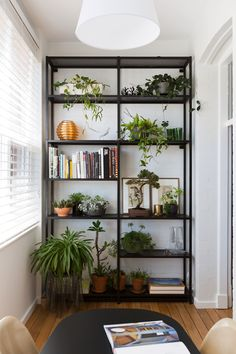 This lovely sunroom feature succulents, bonsai, and sunny views of the nature outside.