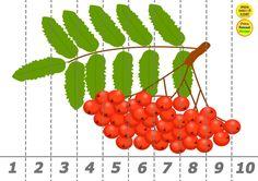 1 из 1 фотографий загружено Activities, Fruit, Pattern, The Fruit, Patterns, Model, Pattern Print, Vorlage