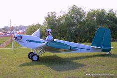 Hummel Aviation CA 2 ultralight aircraft, Hummel Aviation CA 2 ...