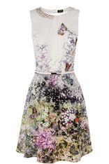 Paloma Buttefly Skater Dress