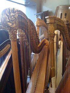 Paris harp shop 2 ~ harpyness