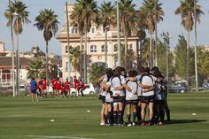 Campos de césped natural y gradas con capacidad para más de 800 personas son las razones por las que equipos de rugby europeos eligen Oliva Nova para la realización de torneos o entrenamientos profesionales durante todo el año.