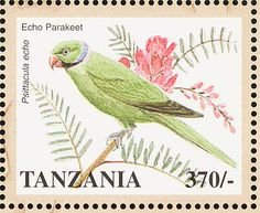 Echo Parakeet stamps - mainly images - gallery format