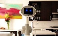 Luna, el proyecto que busca masificar el mercado de los robots personales