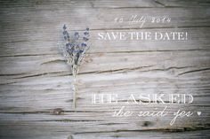 AnD photography - SAVE THE DATE lavender inspiration <3