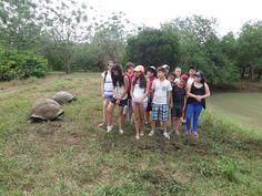 Cuando visitas el Parque Nacional Galápagos puedes encontrarte a muy poca distancia de las Tortugas Gigantes.