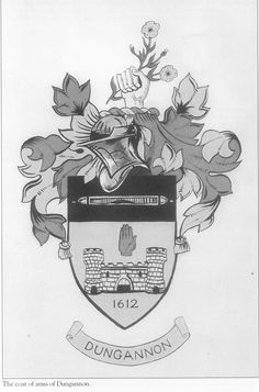 Dungannon Coat of Arms Tyrone Ireland, Coat Of Arms, Northern Ireland, My Father, Historical Photos, Family History, Irish, Coats, Legs