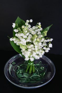 My mom loves Lily of the Valley - and they smell soooo good! Love Flowers, Vintage Flowers, Beautiful Flowers, Floral Centerpieces, Floral Arrangements, 1. Mai, Valley Flowers, Corporate Flowers, Floating Flowers