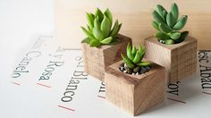 Planter for succulents and cactus. Small Planter box. Original planter for interior. Being so small, they can be used to collect many types of succulents and cactus. Also combine to make beautiful centerpieces or decorate windows. It has a drain hole and though this wood is natural, very tolerant of moisture. ♦Approximate measurements: 5x5x5cm. 2x2x2inches. ♦ Plant not included. ♦ We can send a single item but shipping can be expensive. To get a better price choose our packs. ♦ All pur...