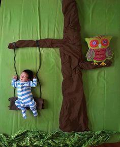 Sesión de fotos niño en un árbol