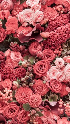 spring wallpaper hd, red and pink flowers, roses and peonies, floral phone wallpaper basteln dekoration garten hintergrundbilder garden photography roses