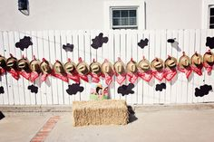 Barnyard, Farm Birthday Party Ideas | Photo 1 of 9 | Catch My Party