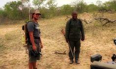 Dave and Herbert on #SafariLive 10-18-16