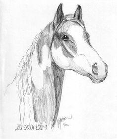 Horse Sketch 6. By Jen Monson