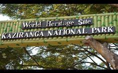 "NGO 'Survival International' Calls for Boycotting Kaziranga National Park Unless Government Lifts ""Shoot-On-Sight"""