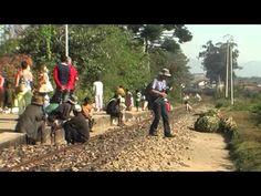 vivre a Madagascar-4.mp4 http://www.dilanntours-madagascar.com/