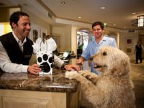 Please Vote For Us In The 10best Readers Choice Poll Best Pet Friendly Hoteog