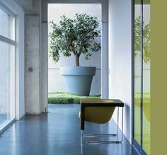 the-small-garden-large-pot and Synthetic grass.. love that!